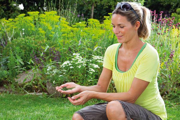 Das so genannte Mulchen sorgt einerseits für ein tolles Mähergebnis und versorgt andererseits den Boden mit wichtigen Nährstoffen.